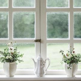 Fensterputzen mit Essig