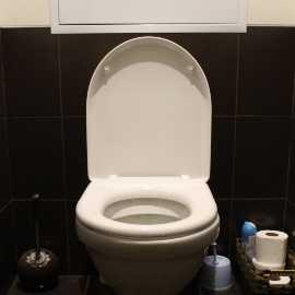 Saubere Toilette nachhaltiger Reiniger selbstgemacht